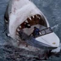 Mega Shark Attack